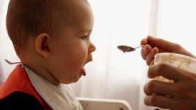 La cámara lenta de un padre feliz joven alimenta sus gachas de avena del bebé del hijo metrajes