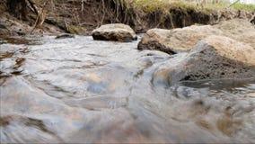 La cámara se está moviendo sobre el agua dulce limpia de una corriente del bosque que corre sobre rocas cubiertas de musgo almacen de metraje de vídeo