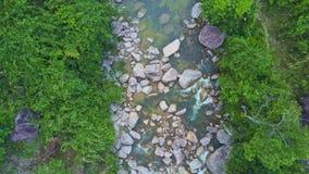 La cámara se mueve sobre corriente con los árboles reflejados en agua