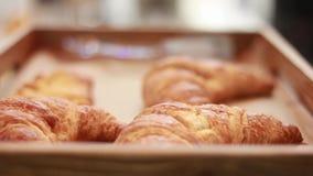La cámara sigue al camarero o el panadero lleva la bandeja por completo apenas de cruasanes franceses curruscantes cocidos fresco almacen de video