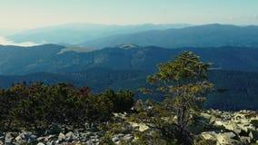 La cámara toma la visión panorámica desde el pico de la cordillera cárpata Una vista de las cuestas boscosas y de los acantilados almacen de video