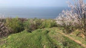 La cámara va abajo en un sendero de la primavera de la tierra a la orilla del depósito de Kakhovka metrajes
