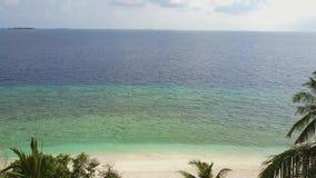La cámara vuela a través de las palmeras sobre el Océano Índico blanco tropical en Maldivas, cantidad de la playa y de la turques almacen de video