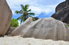 La cáscara de la roca Fotografía de archivo