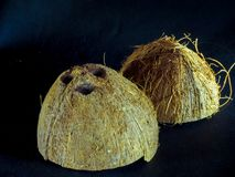 La cáscara del coco tajado secado y que tiene una estructura interesante miente en un fondo oscuro foto de archivo