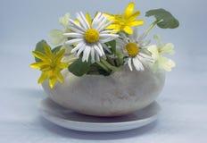 La cáscara del pato como florero para un ramo de primavera florece fotos de archivo libres de regalías
