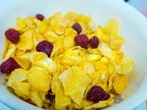La céréale de petit déjeuner photographie stock libre de droits