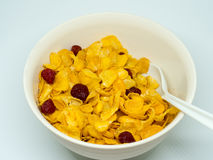 La céréale de petit déjeuner images stock