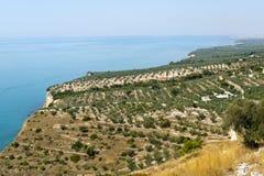 La côte de Gargano (Apulia, Italie) à l'été photos libres de droits