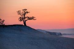 La côte de l'île d'Olkhon photographie stock