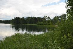 La côte verte du lac images stock