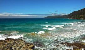 La côte de l'océan pacifique photo libre de droits