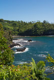 La côte de la baie d'Onomea, Hawaï Photos stock