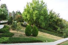 La côte de la Bulgarie stationnements images libres de droits