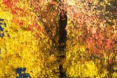 La caída colorea el extracto de las reflexiones Imagen de archivo libre de regalías