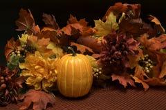 La caída colorea la estación de la cosecha Imagen de archivo