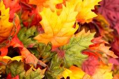 La caída colorea las decoraciones caseras - hojas Foto de archivo libre de regalías