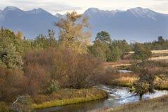 La caída colorea las montañas Montana de las reflexiones del río Imágenes de archivo libres de regalías