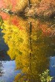 La caída colorea reflexiones del río de Wenatchee Fotos de archivo libres de regalías