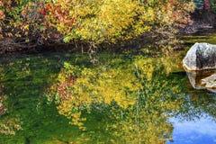 La caída roja amarilla de las hojas colorea el río Washington de Wenatchee de la reflexión del agua Foto de archivo