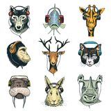 La cabeza animal en auriculares vector el carácter animalista en auriculares o auriculares que escucha el sistema del ejemplo de  stock de ilustración