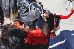 La cabeza blanca tibetana de la piel del color y los yacs negros de la piel del cuerpo del color con la silla de montar para el p Fotografía de archivo