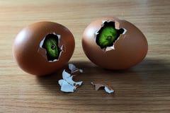 La cabeza de dos serpientes en huevos quebrados Imagen de archivo