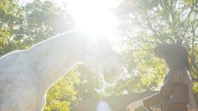 La cabeza feliz del ` s del caballo de las caricias de la muchacha en el sol sube fondo almacen de metraje de vídeo