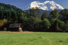La cabina di Rainier Settler immagini stock