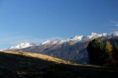 La cadena de Lagorai en otoño Imagenes de archivo