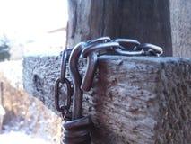 La cadena para el perro del hierro Fotos de archivo
