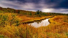 La caduta colora Castine Maine fotografie stock libere da diritti