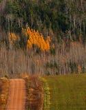La caduta della strada non asfaltata del paese colora la collina immagine stock
