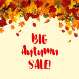 La caduta di autunno lascia il modello del manifesto di vendita di vettore Immagine Stock Libera da Diritti