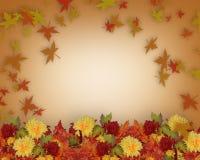 La caduta di ringraziamento lascia e fiorisce il disegno del bordo Immagine Stock Libera da Diritti