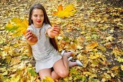La caduta di seduta della ragazza del bambino del vestito da modo di autunno lascia il parco all'aperto fotografia stock libera da diritti