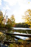 La caduta sopra occhieggia parco di stato del lago, la contea di Brown, Indiana immagine stock