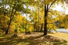 La caduta sopra occhieggia parco di stato del lago, la contea di Brown, Indiana fotografia stock libera da diritti