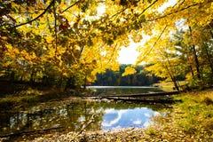 La caduta sopra occhieggia parco di stato del lago, la contea di Brown, Indiana fotografie stock libere da diritti