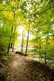 La caduta sopra occhieggia parco di stato del lago, la contea di Brown, Indiana fotografia stock
