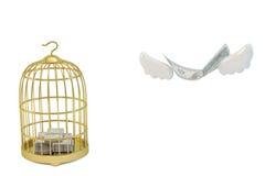 La cage à oiseaux et les dollars d'or volent loin Image stock
