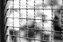 La cage Photo stock
