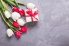 La caja con los actuales y rojos y blancos tulipanes florece en textur gris Imagenes de archivo