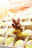 La caja de regalo con los huevos de Pascua y el conejito de pascua figuran Fotos de archivo