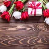 La caja envuelta con los actuales y brillantes tulipanes rojos y blancos florece Imagenes de archivo