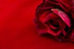 La caja roja del terciopelo con subió Fotos de archivo libres de regalías