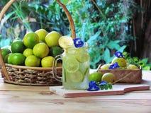 La cal cortó el jugo fresco de la fruta cítrica para el jugo exprimido fresco con hielo Imagenes de archivo