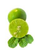 La cal y la menta verdes hojean en el fondo blanco Imagenes de archivo