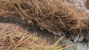 La cala del invierno del agua metrajes