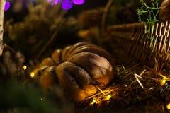 La calabaza adornó la Navidad con las luces en la noche Foto de archivo
